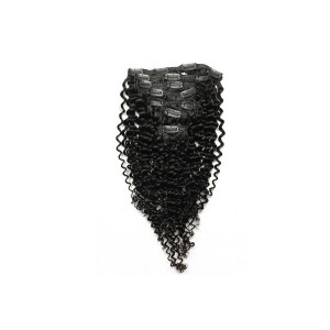 Kinky Curly Brazilian Virgin Hair Clip In Human Hair Extensions Natural Color